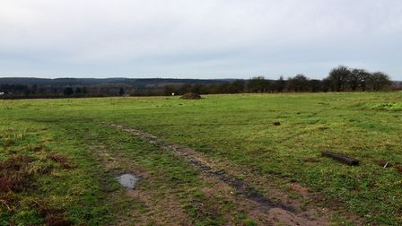 The land in between Brunel Way and the A11 in Thetford which is earmarked for the Thetford Enterpris