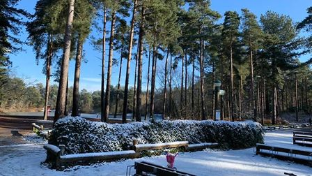Snow at Centre Parcs in Thetford on 30 January 2019. Photo: Cheryl Bailey