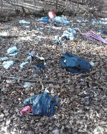 Fly-tipped waste in woodland near the Abbey Estate. Picture: Mandi Carelton