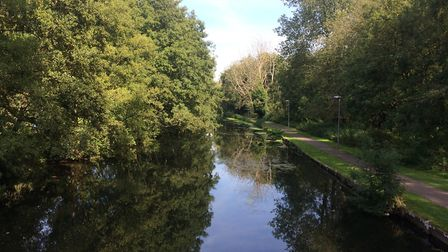 Little Ouse River in Thetford. Picture: Rebecca Murphy