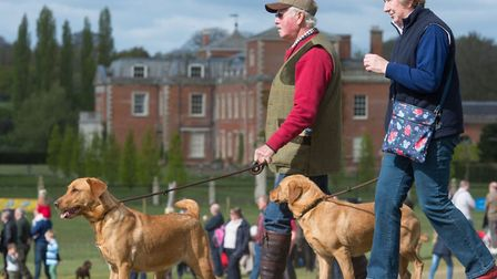 The Euston Show will be taking place on June 19. Picture: East Anglian Game and Country Fair