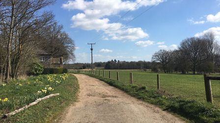 The lane in Riddlesworth, near Thetford, which Patricia took to school. Picture: Darren Norton