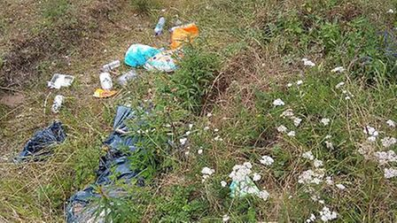 The rubbish left in the Warren Car Park in Thetford Forest. Picture: Bruce Weetman