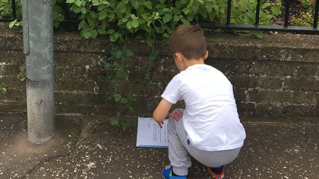 Look for a book treasure hunt has started in Thetford. Photo: Gemma Moss