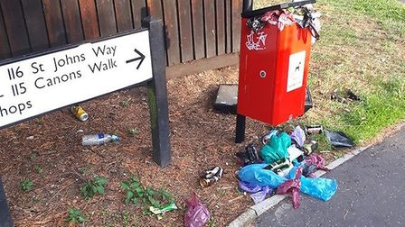 The over flowing dog waste bin on St Johns Way in Thetford. Photo: Dan Anderson