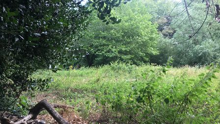 The area of land at Thetford's Spring Walks that may be sold to a private resident to stop anti-soc