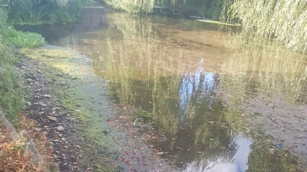 The low water level at the Little Ouse River. Picture: Ian Tinton