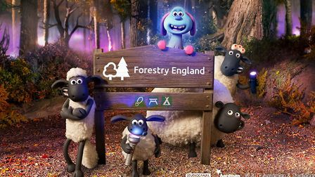 Forestry England's High Lodge, Thetford Forest is inviting families from October 4th to help Shaun t