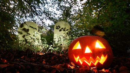 Here are Halloween events going on in South West Norfolk and Suffolk. Picture: ANTONY KELLY