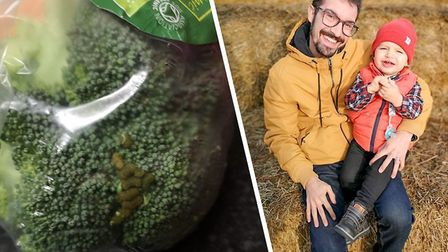 Left, caterpillars found in the broccoli, right, Joao Matos with his son Joao Matos Jr. Picture: Joa