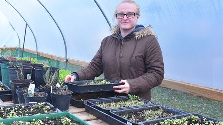 Horticulture industry scheme Teejay at Thetford Garden Centre Pictures: BRITTANY WOODMAN