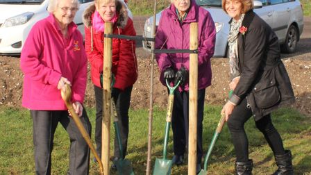 Thetford Town Council is appealing for help as part of a project to plant 3,000 trees before March 2