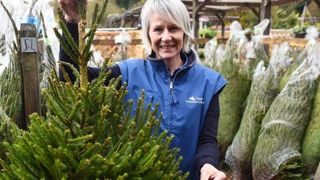 The family behind Thetford Garden CentreOperations manager Marie TurnerByline: Sonya DuncanCopyright