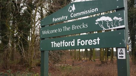 The Thetford Forest sign at the Great Hockham woodland. Picture: DENISE BRADLEY