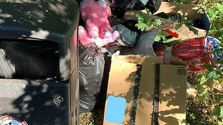 A resident who left a pile of household waste next to a public bin in Thetford has been fined £300 f