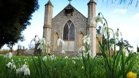 Snowdrop Sunday continues to be a popular attraction at St Mary's.