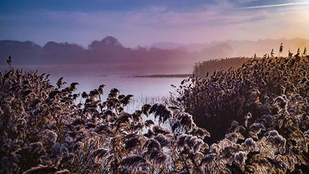 Very foggy sunrise at Cley. Photo: Brad Damms
