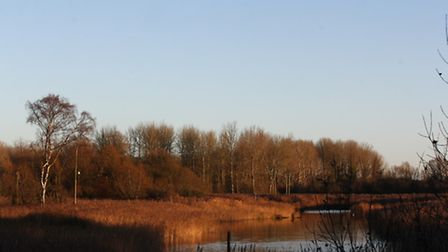 The setting sun last Sunday cast a warm glow over the reserve at Sculthorpe. Photo: Richard Brunton