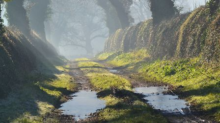 Icy puddles, frost & mist in winter sunlight near Ridlington. Photo: Brian Hicks