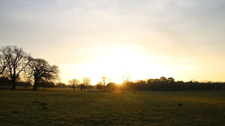 Holkham park as the sun rose. Picture: Martin Sizeland