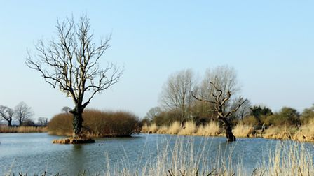 Willow-Lakes-at-Lower-Bodham--