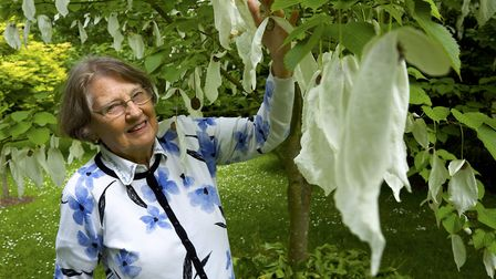Judy Wilson in her garden at Chestnut Farm, West Beckham, which will be open to the public as part o