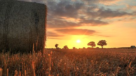 Beautiful sunset at Caston. Picture: Pater Jarvis