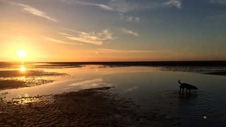 An evening stroll on Wells beach. Picture: Estelle Maidstone
