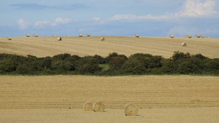 Baled straw on fields taken from the A 149 looking towards Wells. Picture: Paul Reynolds