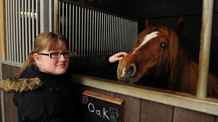 Redwings Horse Sanctuary has won a national award for a major health awareness campaign. Picture: