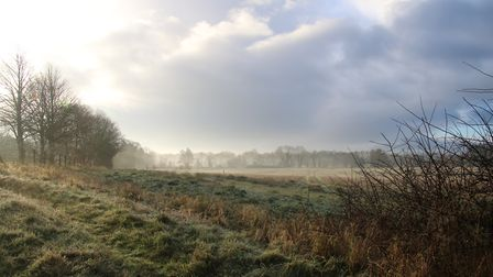 Winter mist over the River Wensum on a frosty morning Photo: Martin Sizeland