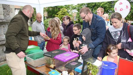 Visitors enjoyed the last North Walsham Children's Day in 2015. Here people are at Ed Mackay's creep