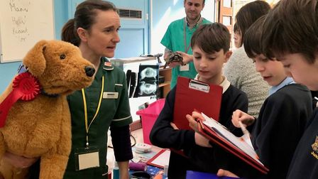 Year 6 pupils chatting to staff from Miramar Vetinerary Practice at Cromer Junior School's annual ca