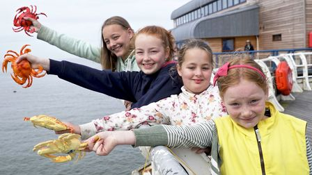 Crab and Lobster festival crab racing off Cromer Pier. Martha, Niamh, Evalyn and Amelia Kirk with th