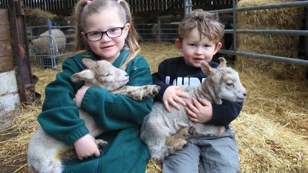 Five-year-old Molly Young and her brother Toby, 3, whose grandparents Graham and Wendy own Felbrigg
