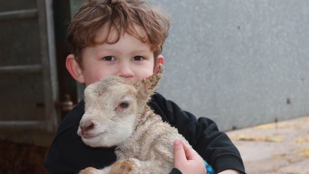 Three-year-old Toby Young, whose grandparents Graham and Wendy own Felbrigg Hall Farm, shares a cudd