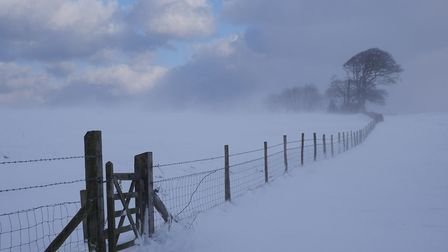 Winter Scene at Felbrigg, by Heather Green, was among the entries in the North Norfolk Photographic