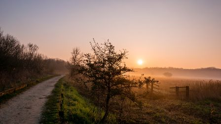 A wonderful misty sun at the Fen early Friday morning. Photo: David Brooker
