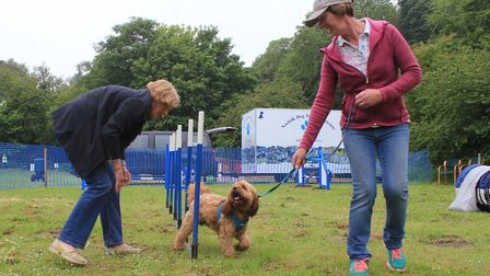 Jane Harrison (left) and her dog Bleu have a go at a dog agility course with the help of Sue Wootton
