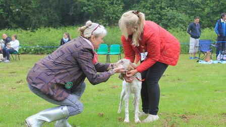 Judge Penny Sands (left) meeting a competitor at North Norfolk District Council's Doggy Day OutPhoto