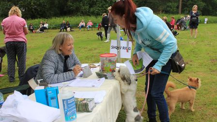 North Norfolk District Council's Doggy Day Out at Pretty Corner woodsPhoto: KAREN BETHELL