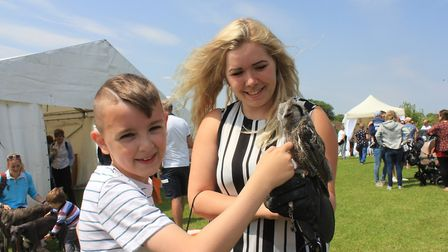 Eight-year-old George Povey meets Bumble the baby white faced owl, brought along to North Norfolk Co