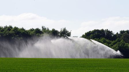 Irrigating crops in dry weather. Photo: Jo Clarke