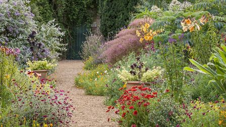 Double borders in Felbrigg Hall's walled garden. Picture: Andrew Butler