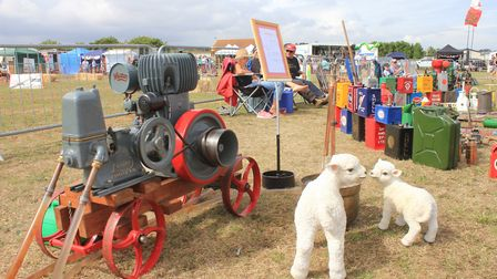 Stationary engines brought along to Cromer Carnival's game and country fair by members of the Starti