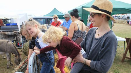 Watching the horses at the Hillside Animal Sanctuary stand.Photo: KAREN BETHELL