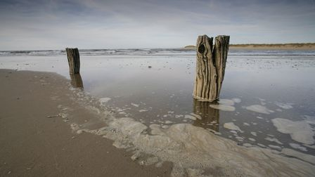 Norfolk's relationship with the North Sea will th esubject of a talk. Image shows Posts on the beach