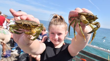 The World Pier Crabbing Championships at Cromer.Picture : ANTONY KELLY
