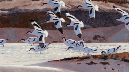 Avocets (detail), by top wildlife artist Robert Greenhalf, whose work will be on show as part of an