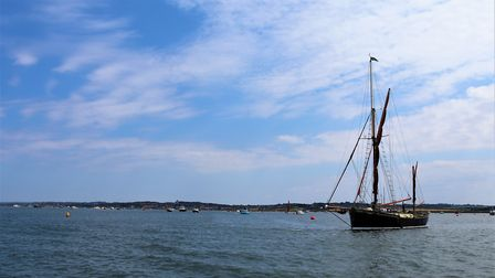 The survey results described Blakeney Point as offering perhaps the best of UK wildlife to the resid
